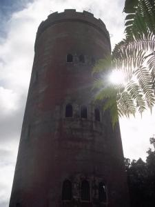 This is an observation tower built in the 1960s in the El Yunque rain forest that I hiked up to.