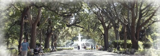 Savannah's biggest square, Forsyth Park. Its beauty never wears out.